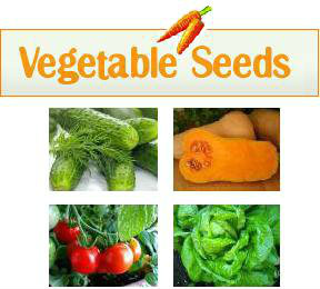 vegetable-seed-w-pictures-new.jpg